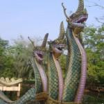 13 знак Змееносец