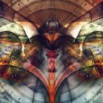 Узнай какая ты бабочка по гороскопу